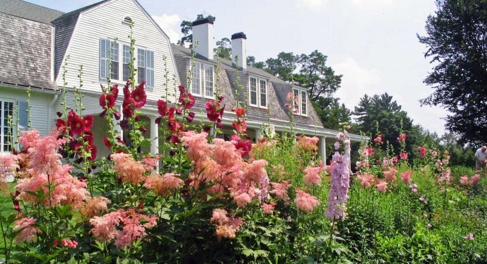 A view of the the main house at The Fells surrounded by wildflowers of every color.