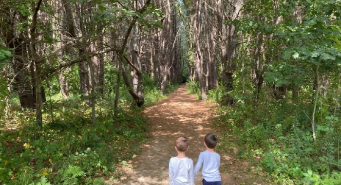 Two young boys walk through the pine forest.