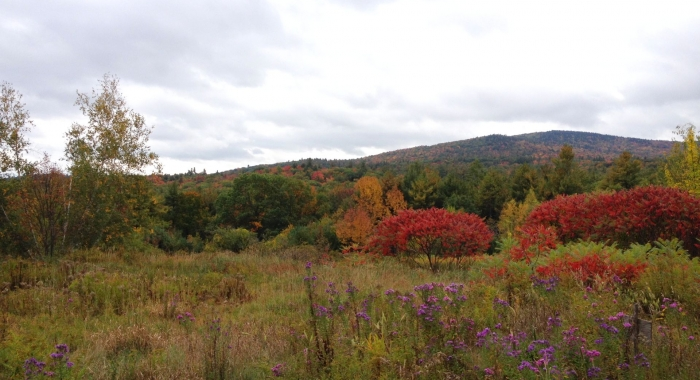 A mountain ridge.
