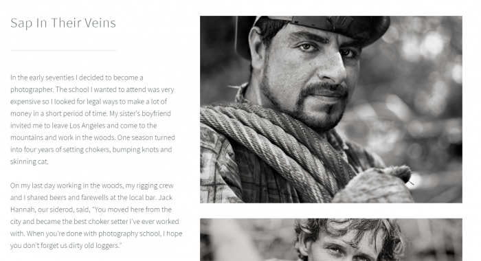 "A preview of David Paul Bayles' website, including images from ""Sap in Their Veins."""