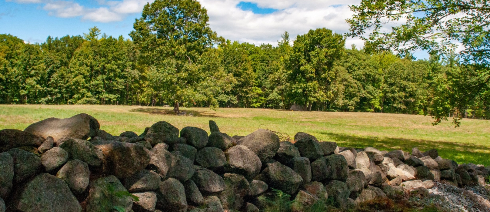 A view over a stonewall at Monson Center of trees and a field.