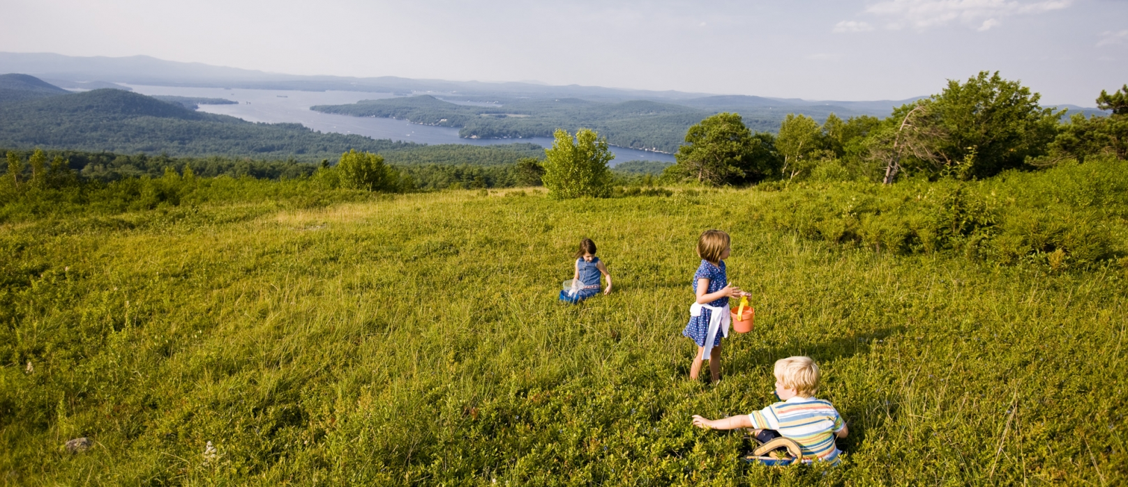 Three children are picking blueberries at the summit of Pine Mountain and views of the Belknap Range.
