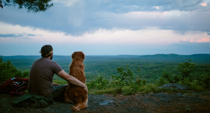 A hiker and dog look out at passing summer thunderstorms