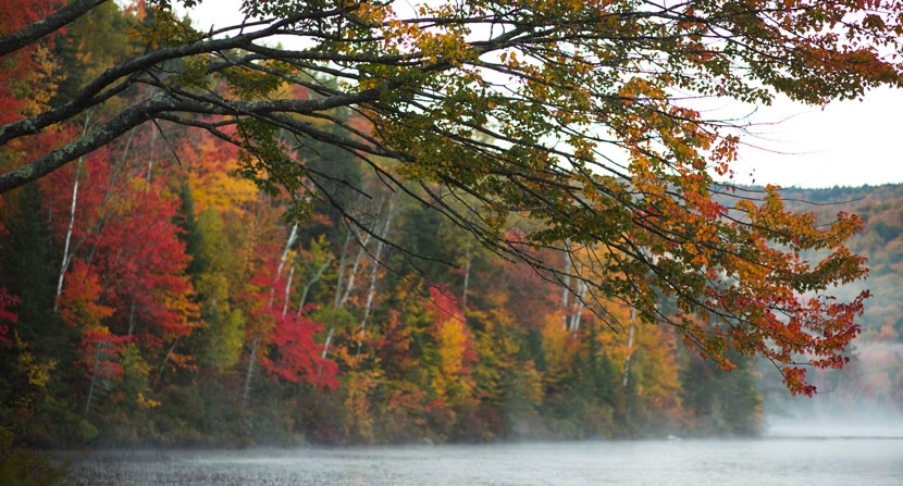 Morning fog rises in the cool morning air of autumn in the White Mountain National Forest