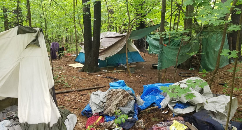 A homeless campsite in the woods in Concord