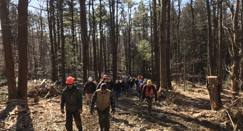 Group hiking uphill at Heald Timber Harvest Tour in Wilton New Hampshire