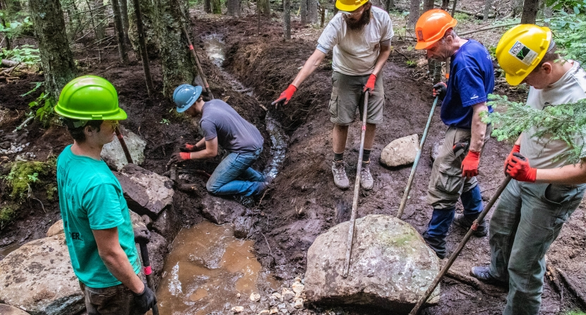 Members of a trail crew get dirty during Monadnock Trails Week as they assess a muddy portion of the trail.