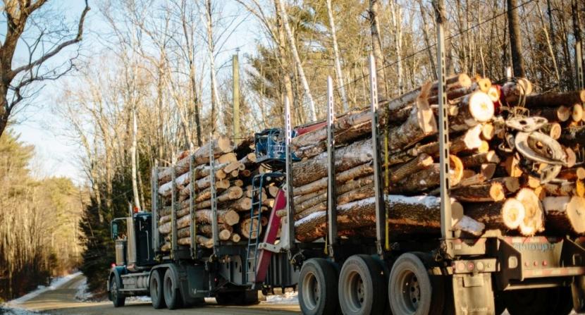 Log truck. Photo EL
