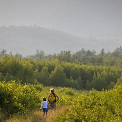 A mother and her child walk through a field surrounded by forest.