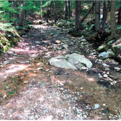 A section of the the Main Trail at Mt. Major is visibly rocky and wet due to erosion.