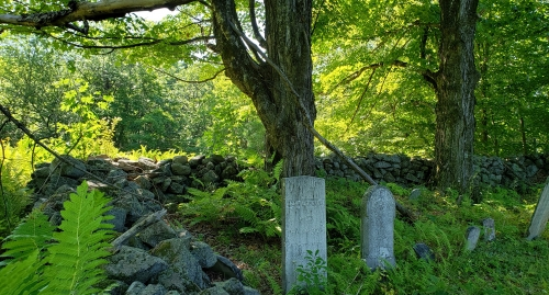Old Cemetery in the woods