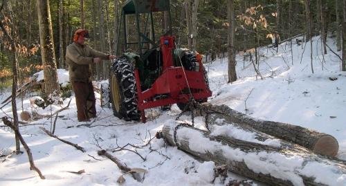 Tractor winch draws oak logs across the snow