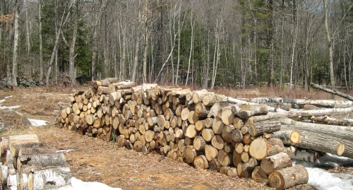 Wood piles in foreground. Stonewall and Meetinghouse Hill in background