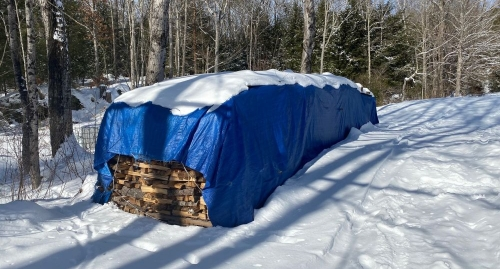 Blue tarp covers cordwood for maple sugaring evaporator