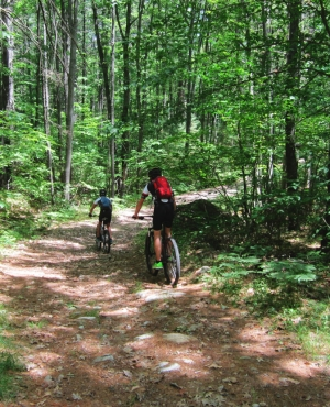 Miles of trails offer recreational opportunities for Manchester area residents