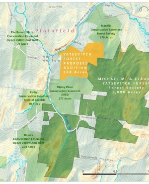 A map of the addition to Yatsevitch Forest.