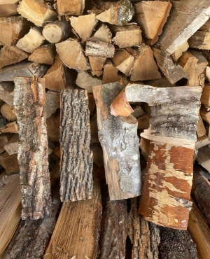 A selection of gourmet firewood in winter woodshed