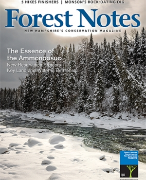 Forest Notes Winter 2021