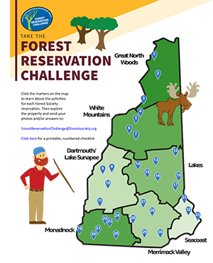 Forest Reservation Challenge game board