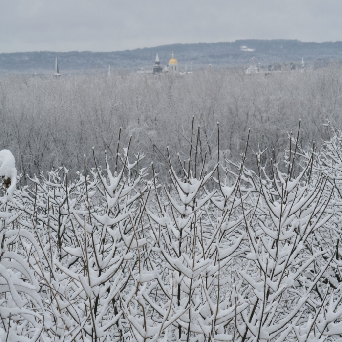 A view of the state capitol's dome in Concord from a snow-covered floodplain.