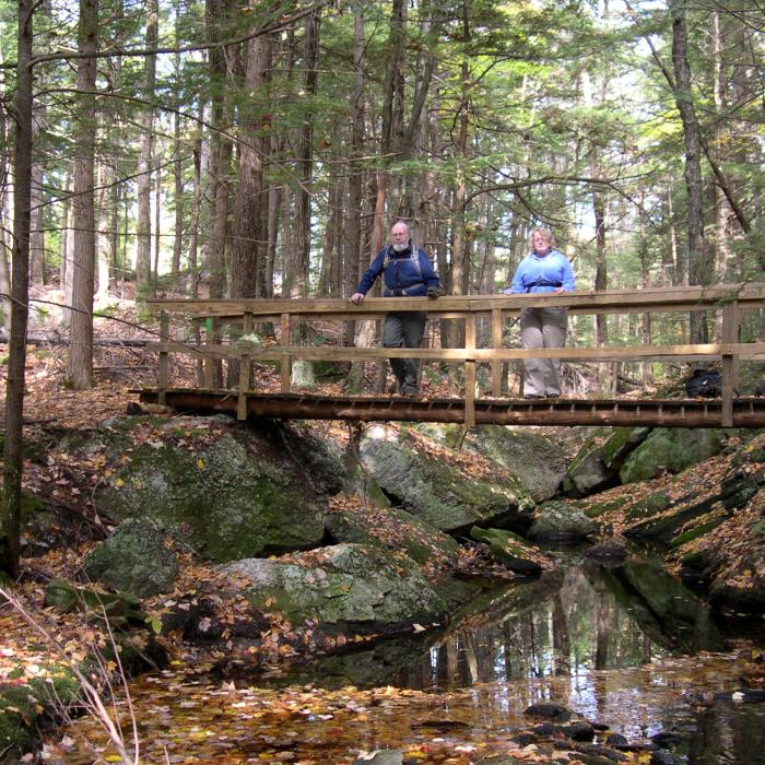 Heald Tract | Forest Society