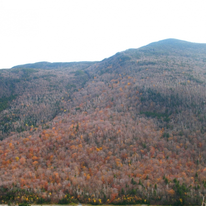 A ridge near Lost River.