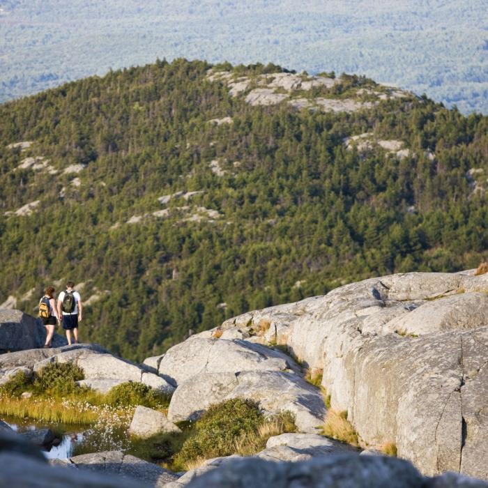 The rocky summit of Mount Monadnock.