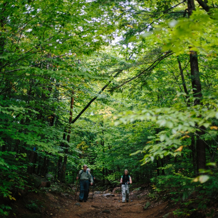 Hiking the Brook Trail at Mount Major in summer