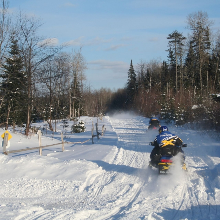 Snowmobile tracks along a trail in winter.