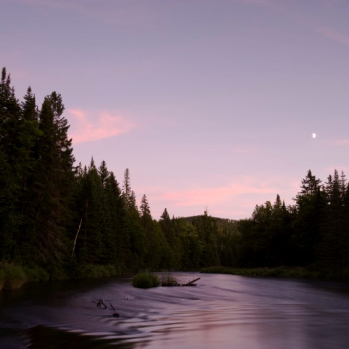A purple sunset on water in Washburn Forest.