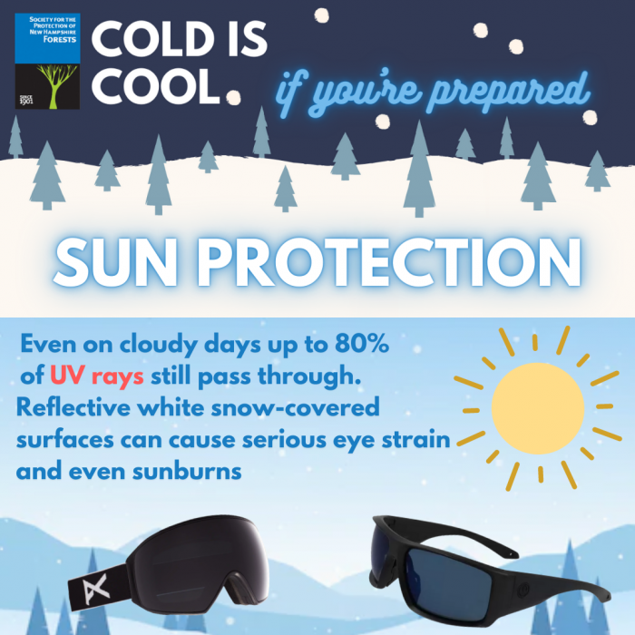 A graphic of sunprotection - sunglasses.