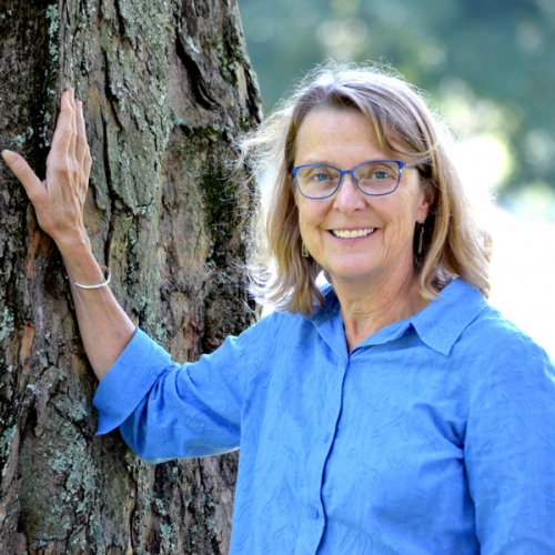 Jane Difley, President/Forester for the Society for the Protection of New Hampshire Forests